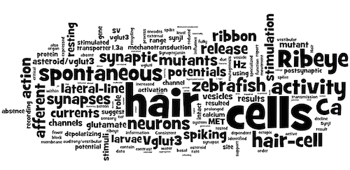 Trapanilab Wordle